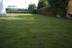 Máme-hotovo-trávníkový-koberec-položen