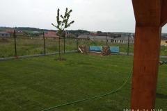 Položení-trávníkového-koberce-4