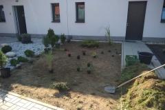 5.-osázení-rostlinami
