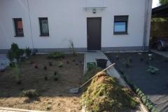 6.-osázení-rostlinami