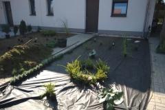 7.-osázení-rostlinami